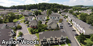 Avalon Woods